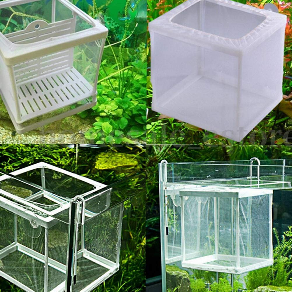 Tcplyn Premium Quality Plastic Frame Net Fry Hatchery Mesh Fish Fry Hatchery Breeder BoxSeparation Net for Aquarium with 4 Suction Cups,White Pet Supplies