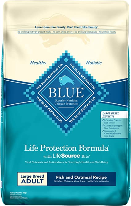 Blue Buffalo Life Protection Formula Large Breed Dog Food | Chewy