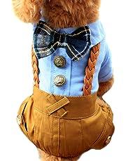 Alfie Pet - Tammy Gentleman Jumper with Bow - Color: Blue, Size: Large