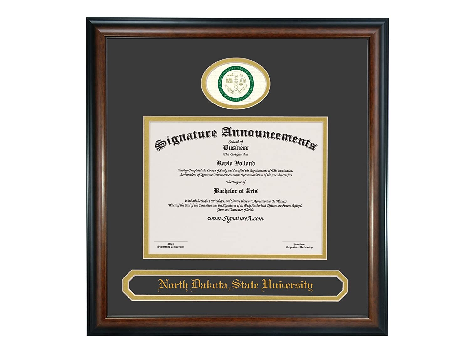 Professional//Doctor Sculpted Foil Seal /& Name Graduation Diploma Frame 16 x 16 Matte Mahogany Signature Announcements North-Dakota-State-University Undergraduate