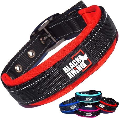 Black Rhino Padded Dog Collar