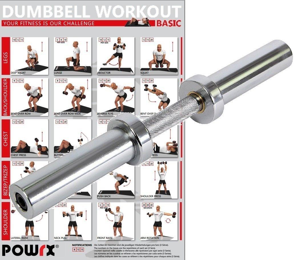 POWRX - Barra corta de mancuerna cromada - Incluye PDF Workout I Olympia Barra de pesas Cromado I Pesas 50 cm x 50 mm: Amazon.es: Deportes y aire libre