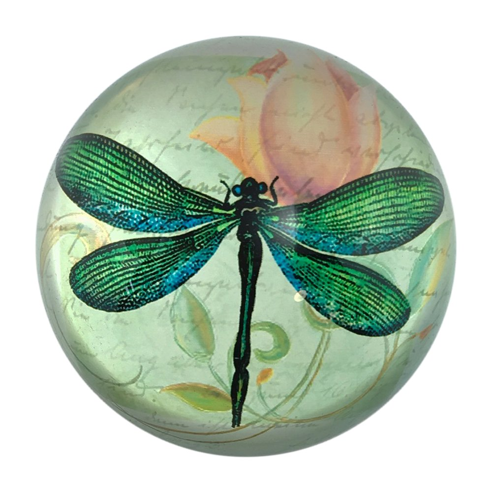Value Arts Green Dragonfly Glass Dome Paperweight, With French Script, 3 Inches Diameter