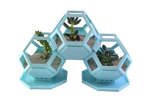 Macetas para cactushttps://amzn.to/38uvuH3