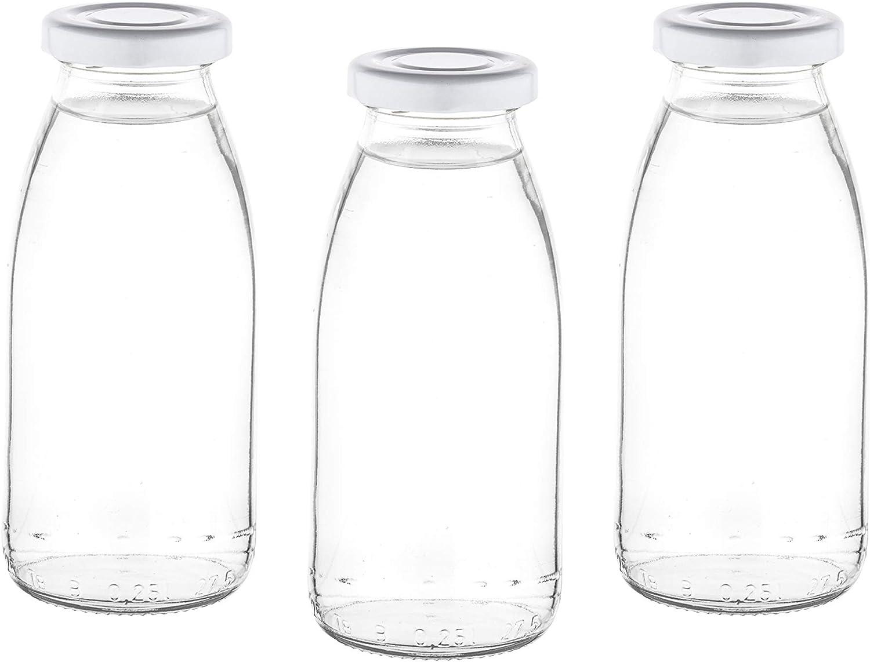 slkfactory - Botellas de Cristal vacías (24 Unidades, 250 ml, con tapón de Rosca, 0,25 L)