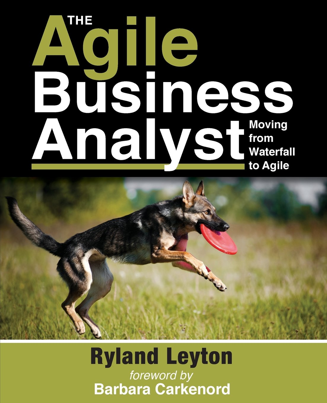 Read Online The Agile Business Analyst: Moving from Waterfall to Agile pdf epub