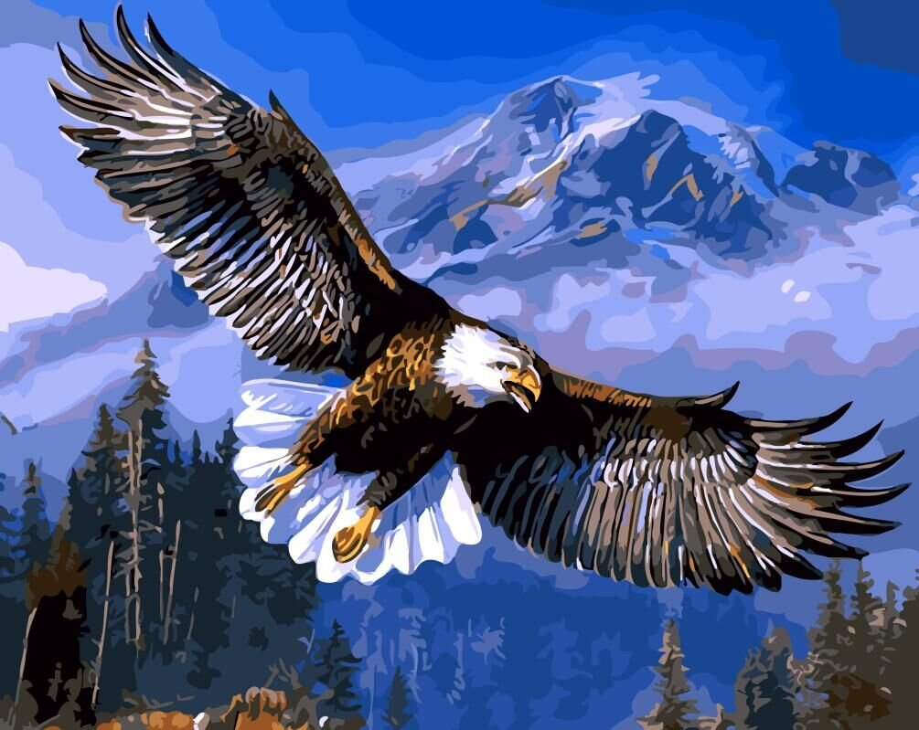 SHIYIXING DIY Oil Painting, Adult Children's Hand Painting- The Eagle soars 16 X 20 inch.
