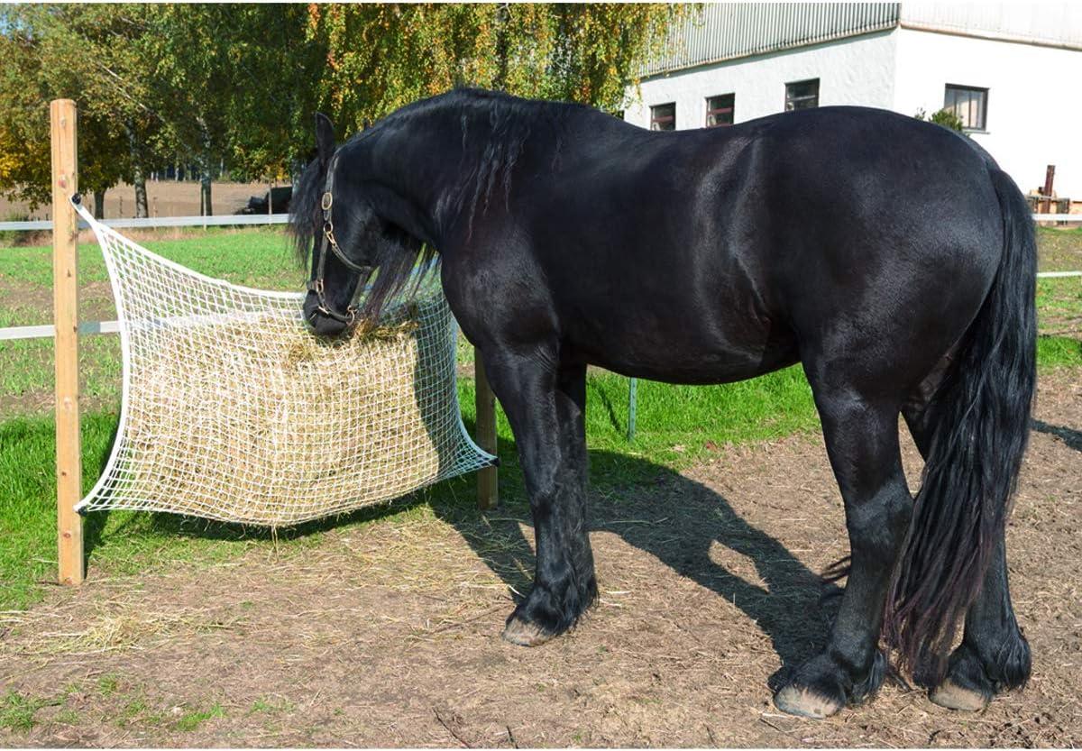 Kerbl 328296 Heunetz Blanc 160 x 100 cm Maille 3 x 3 cm