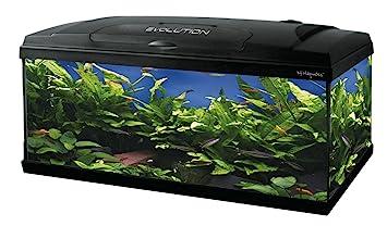 Haquoss Acuario Evolution 100; Dimensiones: 100 x 30 x 54 cm, Capacidad: 115 litros, con luz LED 9,5 W, Completamente Equipado: Amazon.es: Productos para ...
