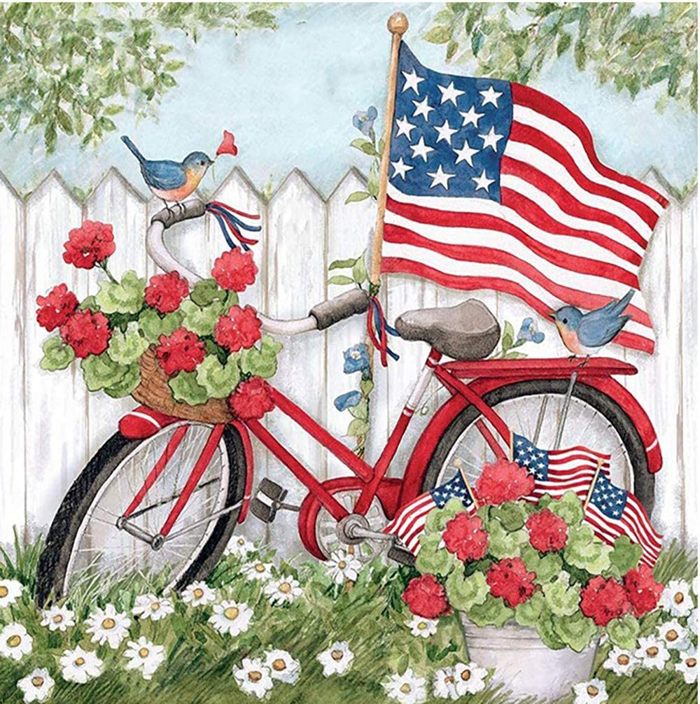 """Holly LifePro DIY 5D Diamond Painting Kits for Adults, Full Drill Garden Bike with American Flag Crystal Rhinestone Embroidery Pictures Arts Craft for Home Wall Decor Gift(11.8""""X15.8"""")"""