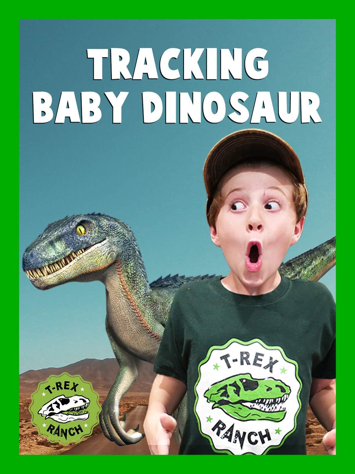 Tracking Baby Dinosaur T-Rex Ranch