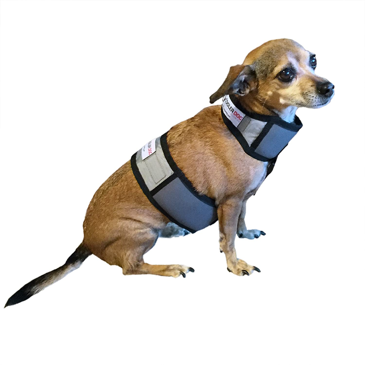 Cooler Dog Cooling Vest and Cooling Collar XS
