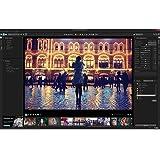 PaintShop Pro X9 Ultimate [Download]