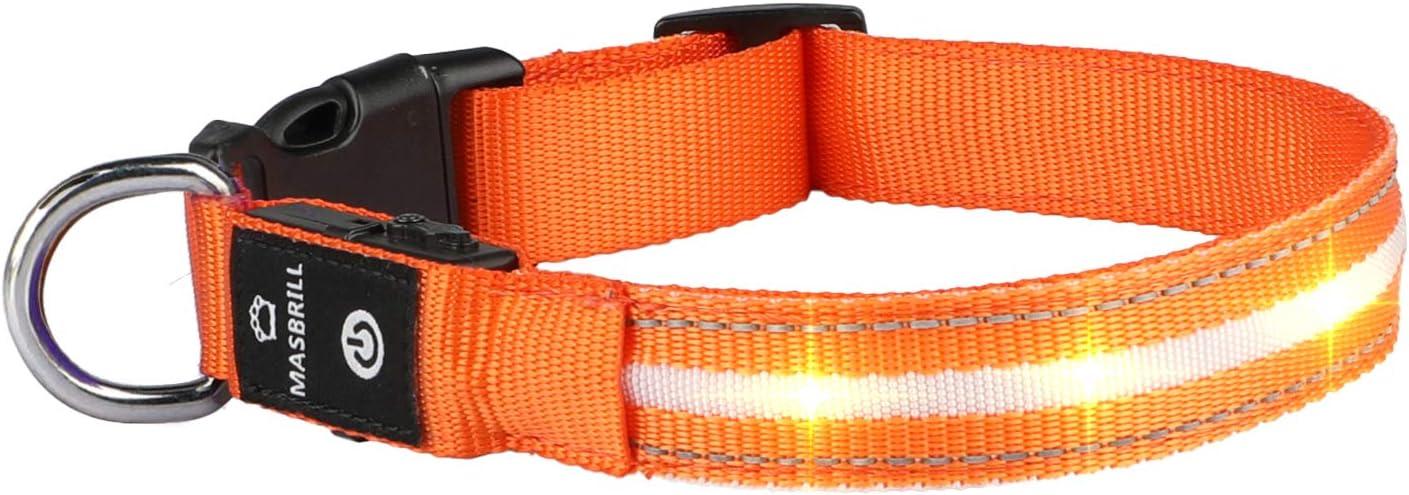 MASBRILL Collar de Perro Luz LED, 3 Modos Collar Perro Luminoso con Recargable y Impermeable, Collar de Perro de Destello Ajustable para Perros Pequeños/Medianos/Grandes(Naranja M)
