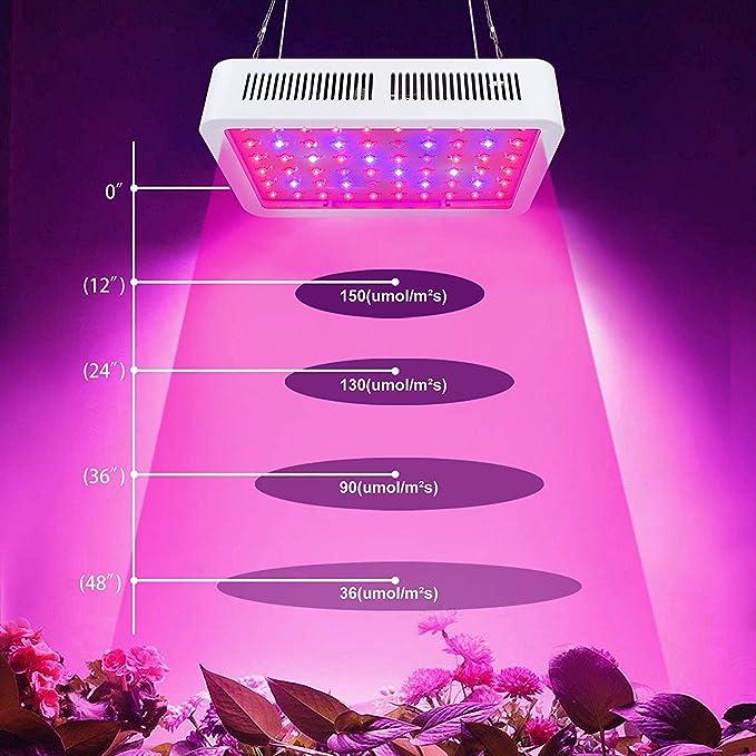 Lampe Indoor Et 300w Led Floraison Croissance Plantes Fleurs Culture Intérieur Pour Parfait roleadro Horticole De Plante 0XO8wPnk