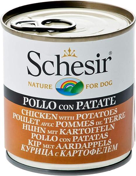 Schesir, Comida húmeda para Perros Adultos, Sabor Pollo con Patatas, filetes en gelatina Blanda - Total 4,56 kg (16 latas x 285 gr)