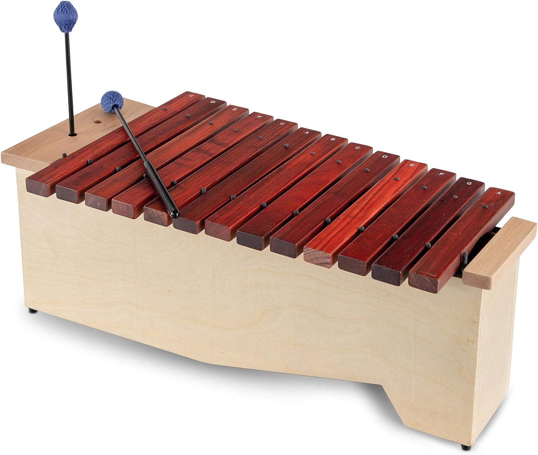 Xilófono alto Classic Cantabile AX-1600NG: Amazon.es: Instrumentos ...