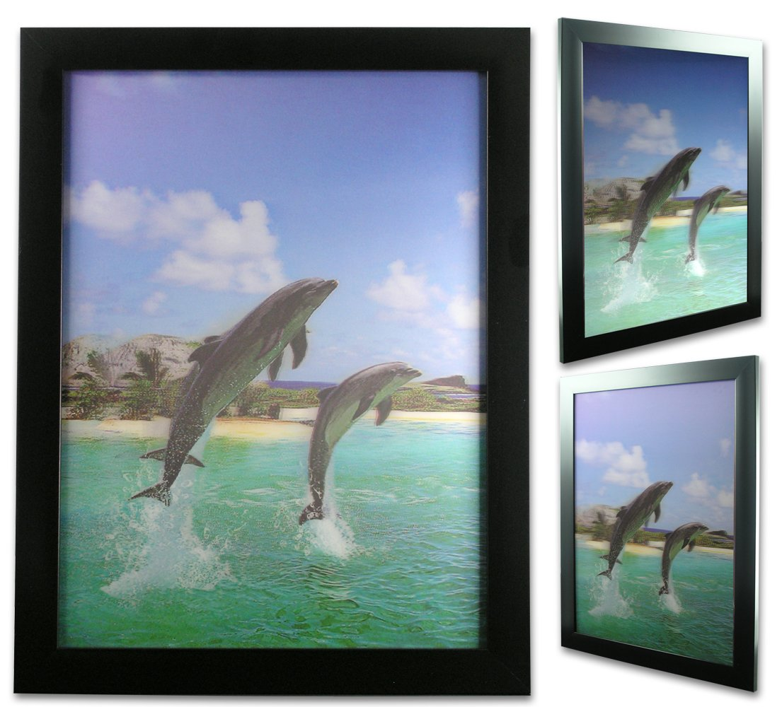 Amazon 3d dolphin print ocean and tropical scene 3 amazon 3d dolphin print ocean and tropical scene 3 dimensional holographic lenticular animated black framed poster wall art print hang in kids jeuxipadfo Images