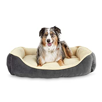 Amazon.com: Animaze - Cama para perro, color gris, 32.0 in ...