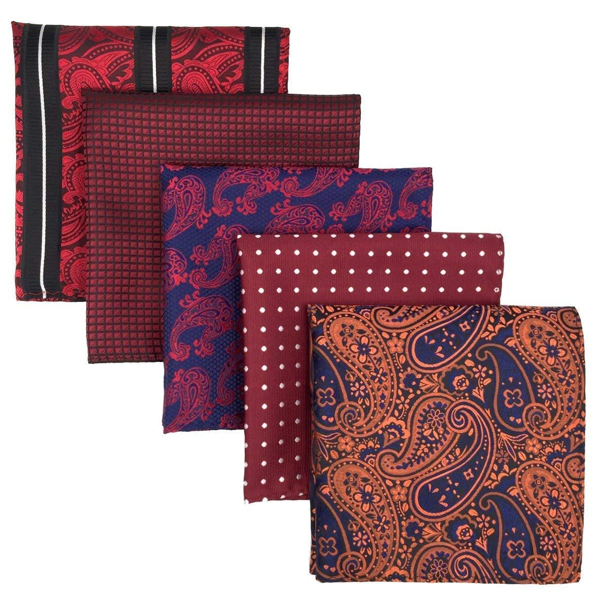 Shlax& Wing 5 Pieces Assorted Mens Pocket Square Handkerchiefs Set HSET-2