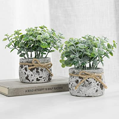 MyGift Faux Jade Succulent Plants in Textured Gray Cement Planter Pots with Rope Ribbon, Set of 2: Home & Kitchen