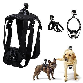 Facilidad perro pecho cinturón deportes cámara accesorios cámara de montaje y marco para pantalla plana para Polaroid Cube: Amazon.es: Productos para ...