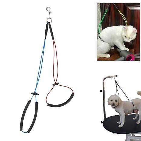 Arnés para el Cuidado del Perro Mascota - BEESTGIFT Suspensión del ...