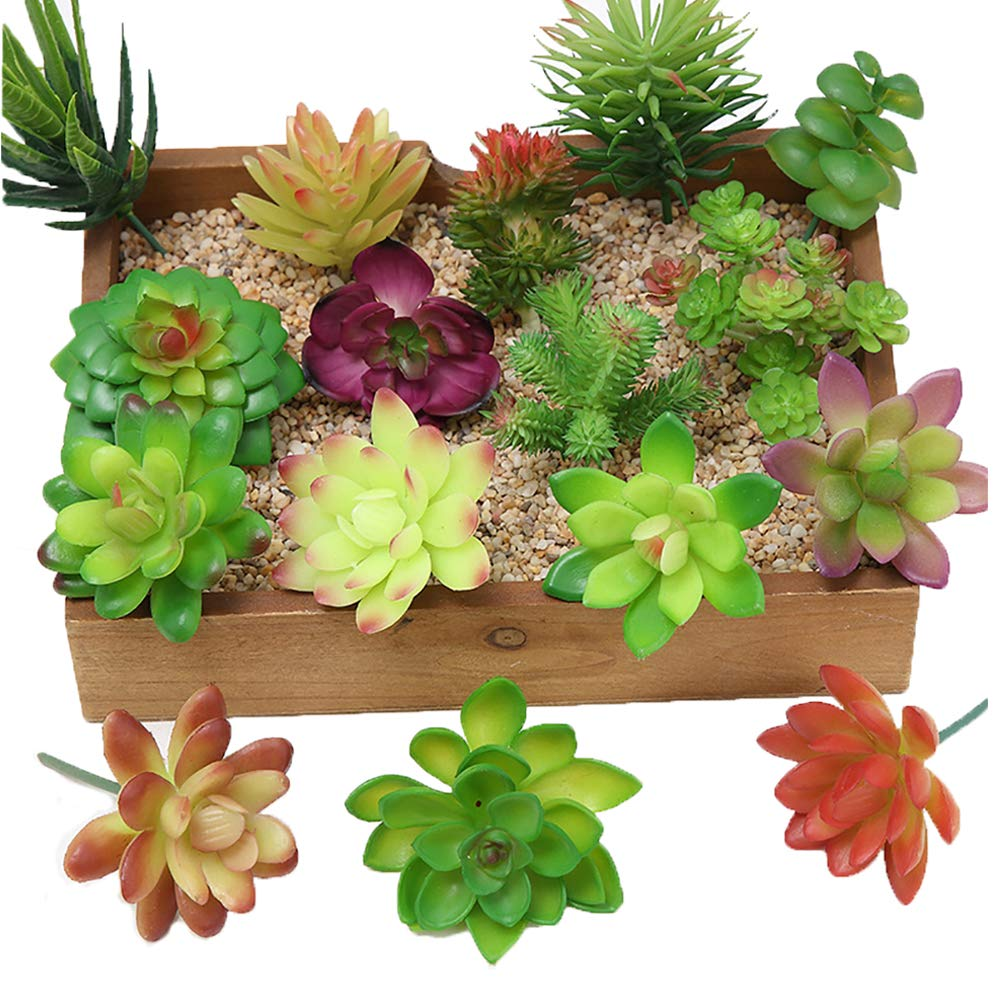 Kalolary 16 Pcs Artificial Succulent Flowers Plants Mini Unpotted Decor Stems Mixed Fake Succulents Plants Bulk Assorted Picks Birthday Home Decor Indoor Wall Garden Hotel Desk DIY Decorations
