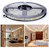 Auralum 5m SMD 5630 300 LED da 12V 72W 12000LM IP65 polvere ermetico impermeabile dust proof bianco caldo lampadina LED Band striscia luci tubo flessibile
