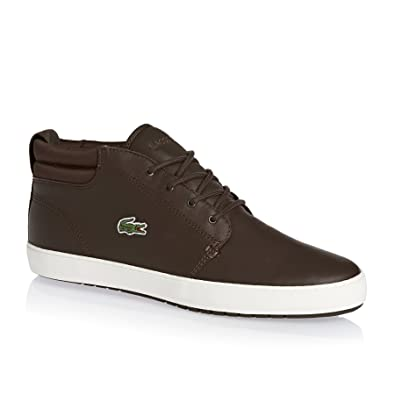 ceb4fff22 Lacoste Mens Dark Brown Ampthill Terra 316 1 Trainers  Amazon.co.uk  Shoes    Bags