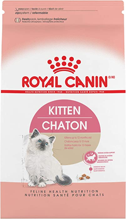 The Best Kitten Food Royal
