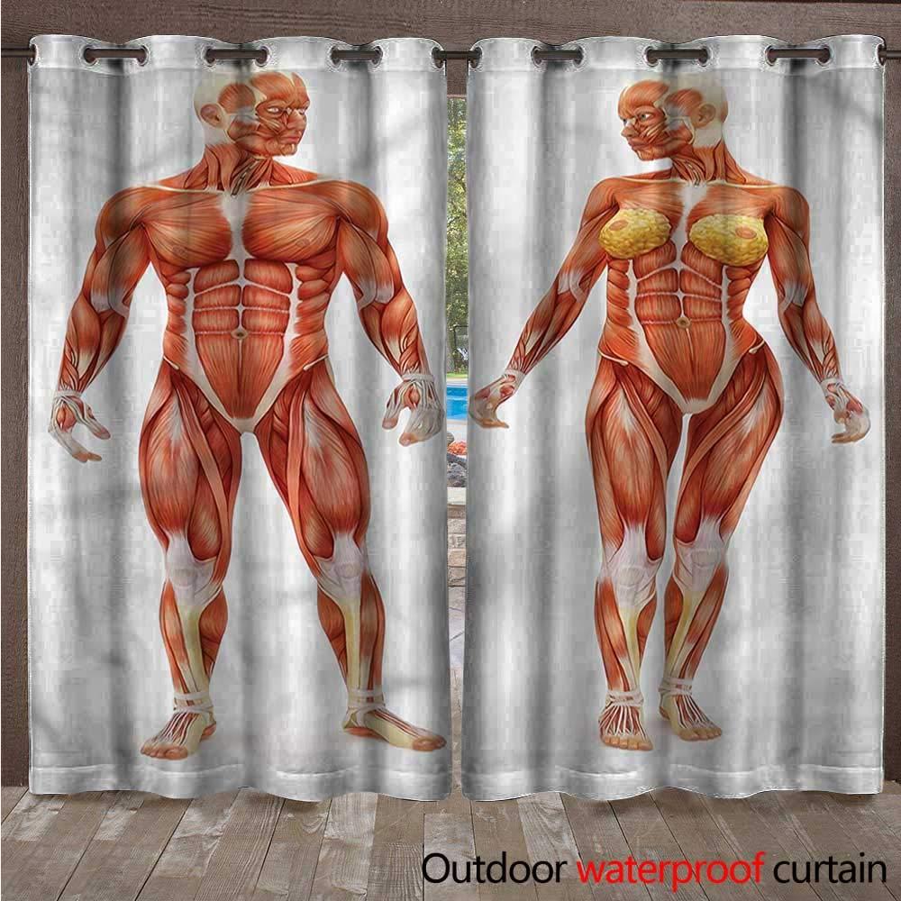 Amazon Cobedecor Human Anatomy Home Patio Outdoor Curtain Male