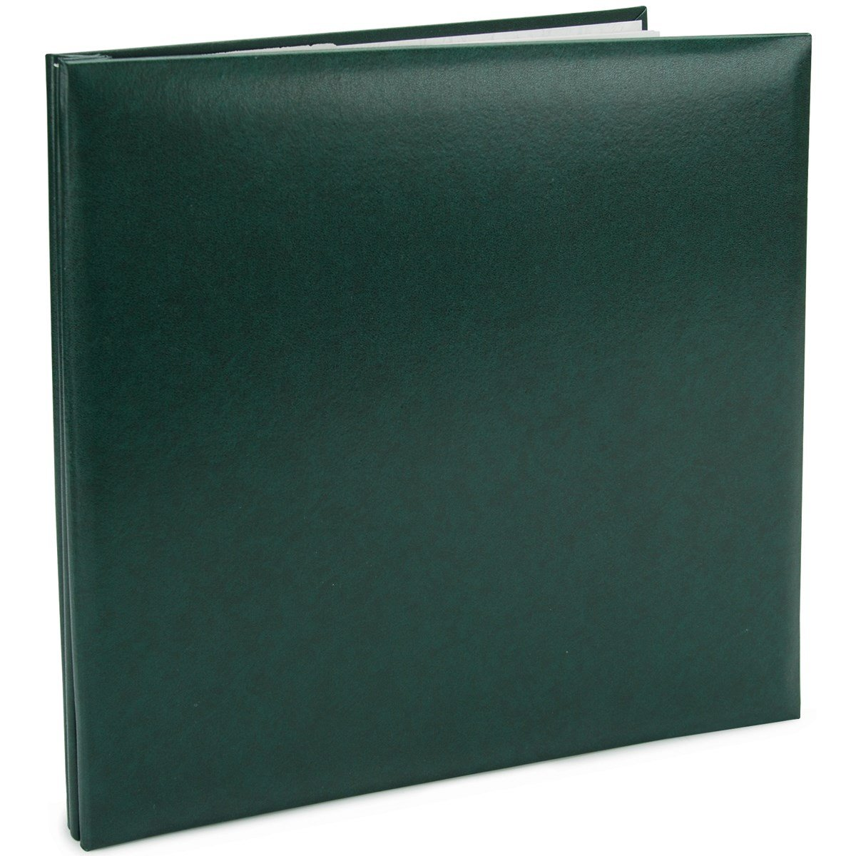Pioneer Leatherette Postbound Album 12-Inch by 12-Inch, Green