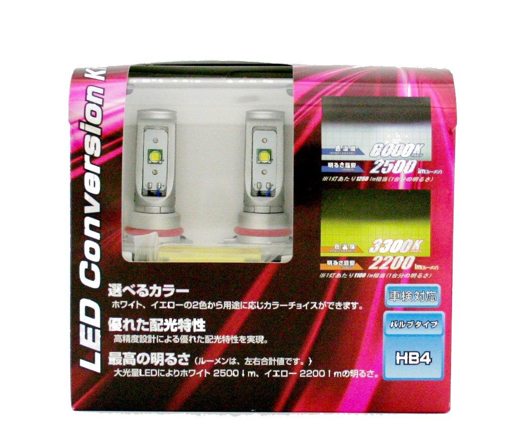 CATZ(キャズ)  REFLEX LED フォグコンバージョンバルブ HB4 6000ケルビン(3300ケルビン) CLC03 B00K2R0LLY