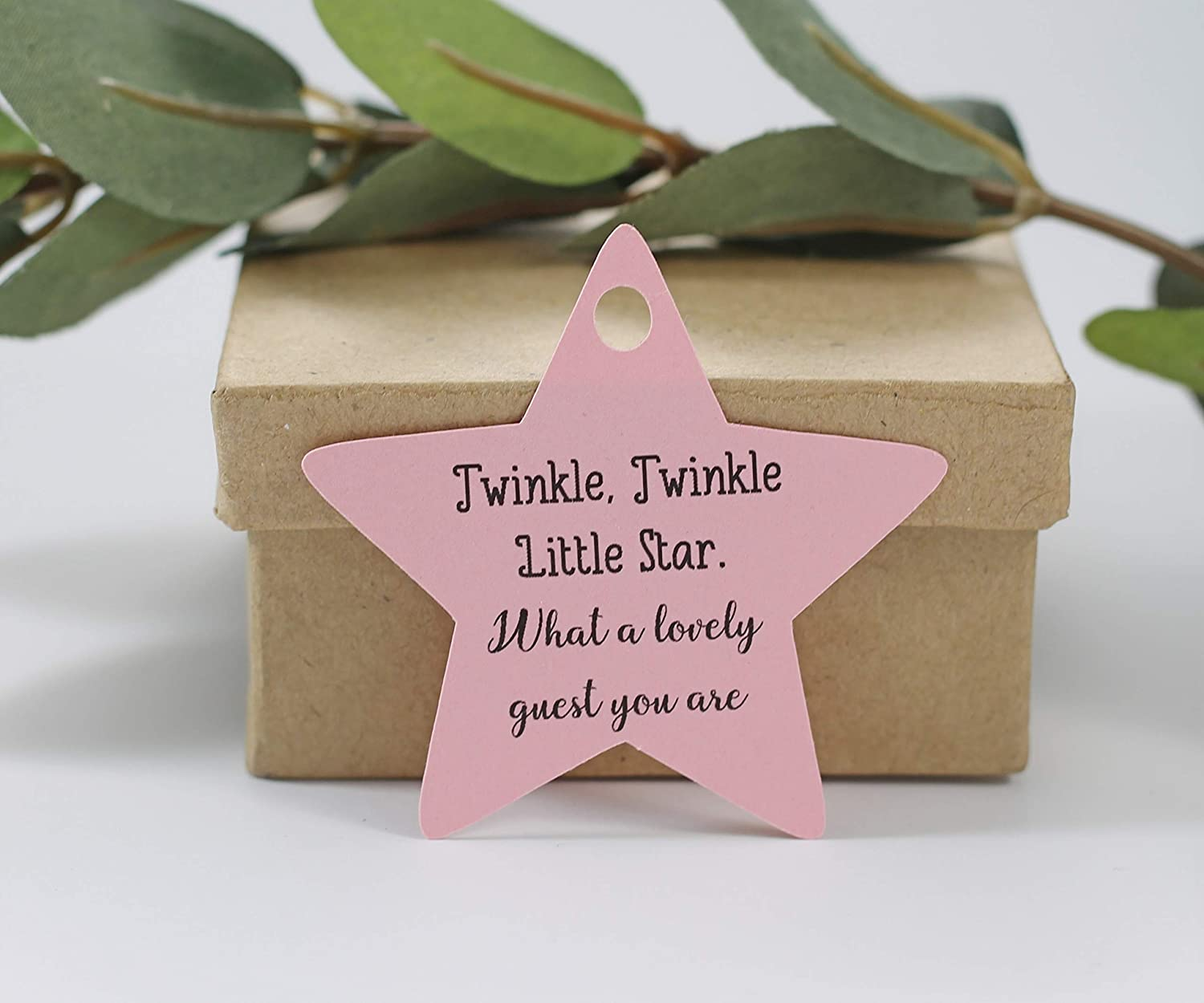 Light Pink Star Shaped Tags for Baby Shower Twinkle Twinkle Little Star What a Lovely Guest You Are 20pc