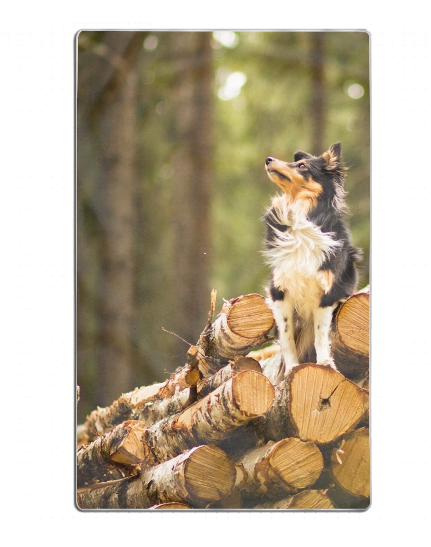Animal Dog Wood Log Beach Towels 31.5x51.2 inches with Extra Thick,Soft,Water Absorbent Beach Throw, Yoga Mat