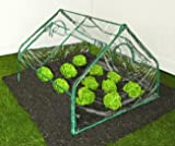 Zenport SH3214A Greenhouse, 4' by 4' by