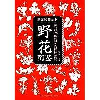 含章·图鉴珍藏丛书:野花图鉴