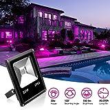 KOOT UV LED Flood Light Black Lights, 20W Ultra