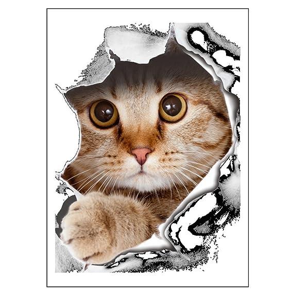 Amazon.com: FYUE 3D Cartoon Cat Stickers Toilet Paste Cover Stickers Decoration: Home & Kitchen