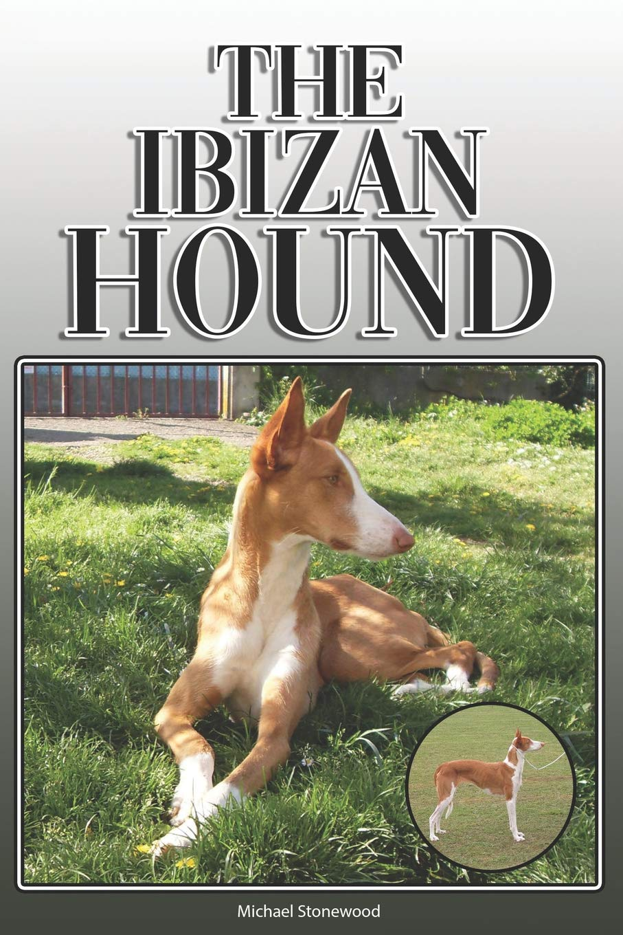 Ibizan Hound (Comprehensive Owners Guide)
