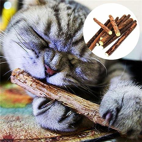 Juguetes Gatos, Chewing Cat Stick 2 PCS Juguete Masticar Gati to Limpieza Dientes Natural Divertido