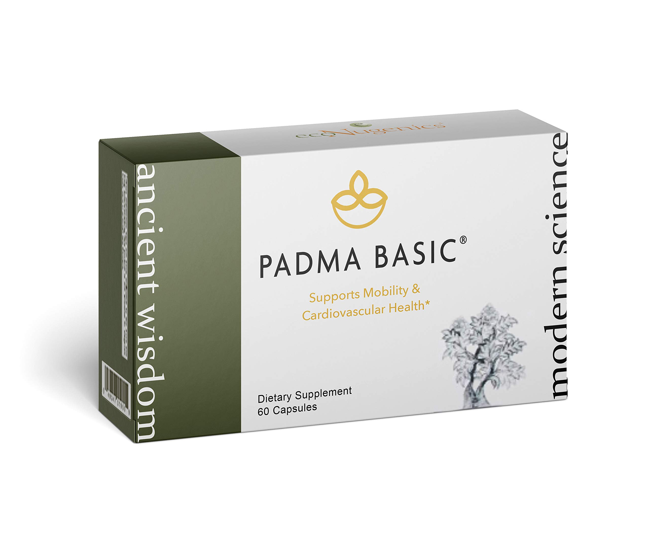 EcoNugenics – Padma Basic – 60 Capsules | Professionally Formulated to Support Healthy Circulation | Enhanced with Botanical Ingredients, Natural Camphor & Calcium Sulfate