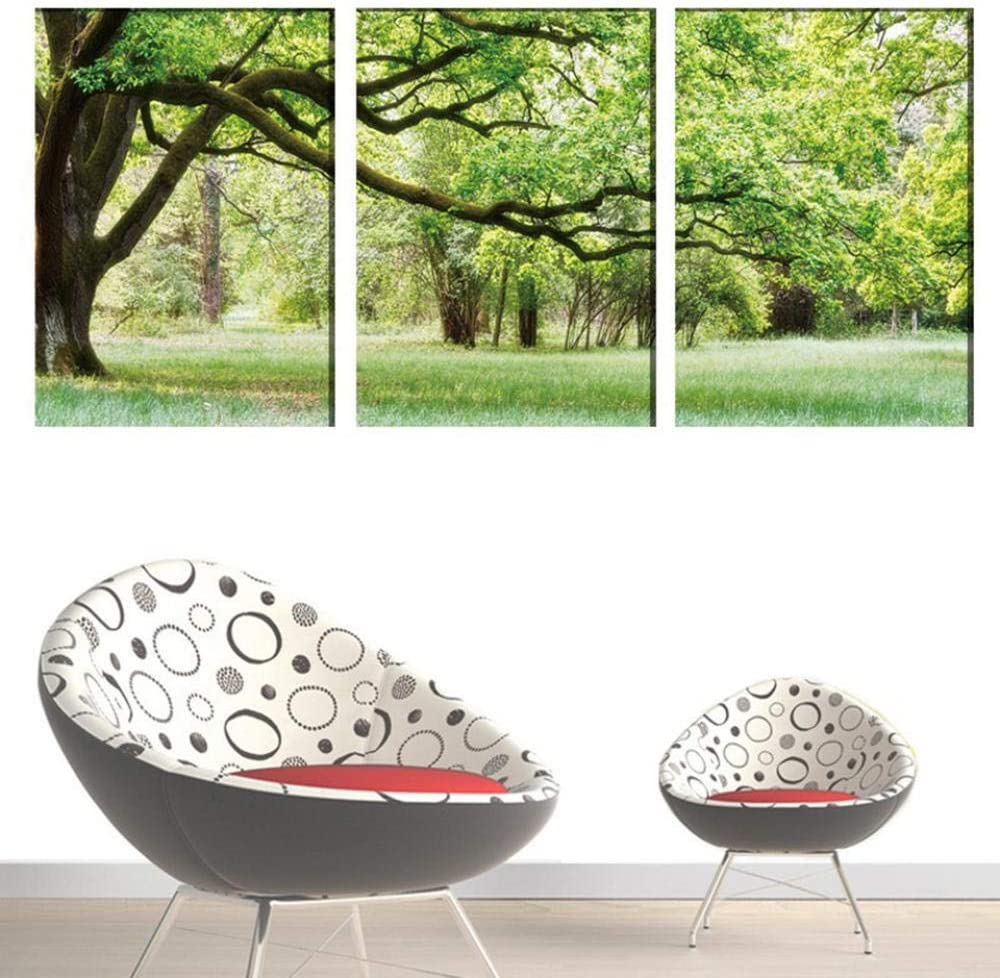 HXZFF Impresiones sobre Lienzo,3 Panel De Bosque de Plantas Verdes ...