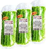 Green Apple Licorice Twist 3-1lb Bags (3 Pack) (NET WT 48 OZ) Gourmet Kruise Signature Gifts