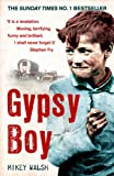 Gypsy Boy: The bestselling memoir of a Romany childhood