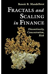 Fractals and Scaling in Finance: Discontinuity, Concentration, Risk. Selecta Volume E Hardcover
