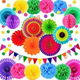 Fiesta Theme Party Supplies, Mexican Cinco De Mayo Party Decorations for Adults, Pom Poms Paper Flowers, Fans, Garlands…