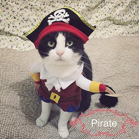 Smoro Divertido Traje de Chaqueta Pirata Super Lindo Corsair ...