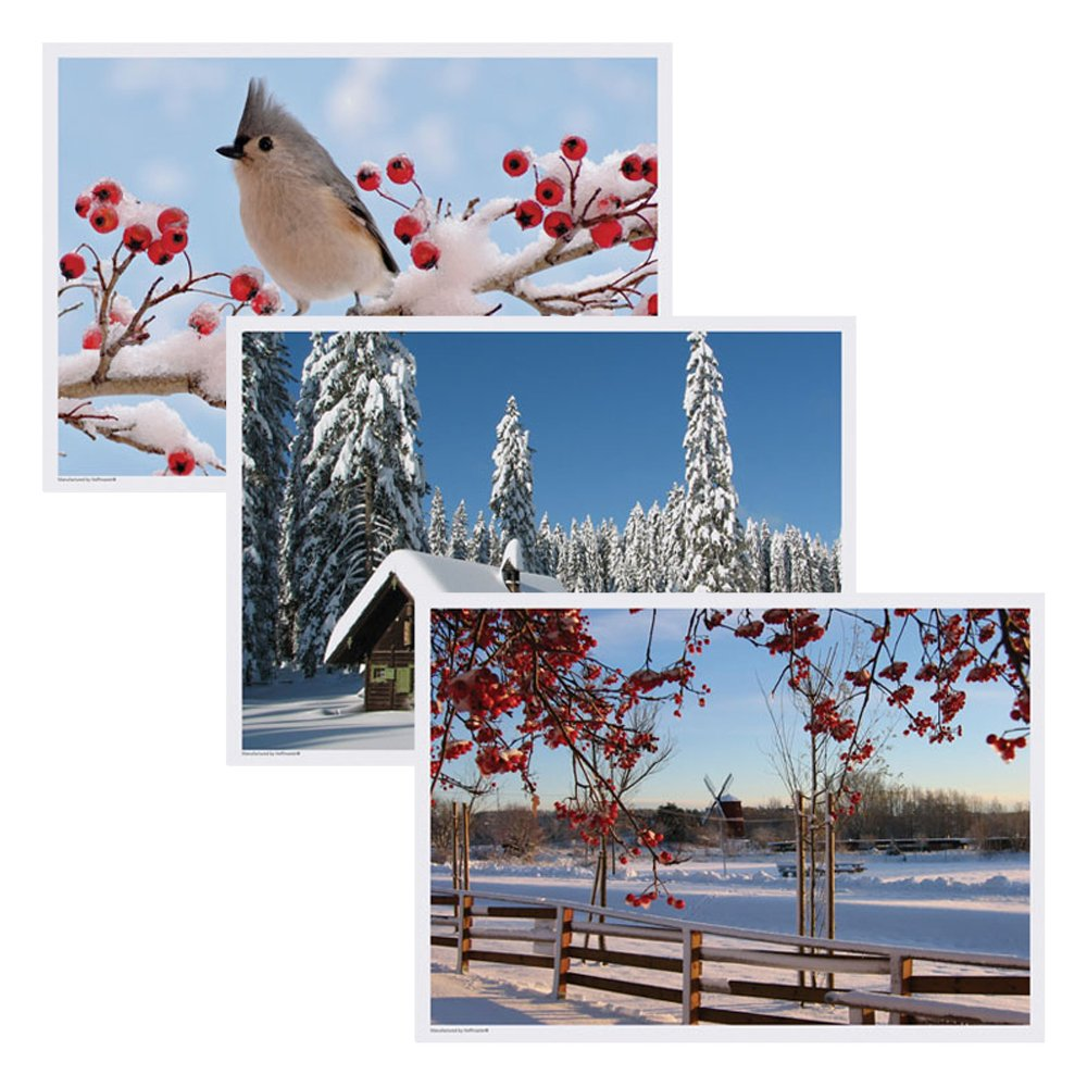 Hoffmaster 702079 Placemat Multipack, 3 Designs, 14'' Length x 10'' Width, Winter (Case of 1000) by Hoffmaster (Image #1)